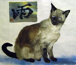 Cat-1_t